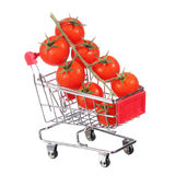 Tomatoes in shopping cart isolated. concept. Stock Images