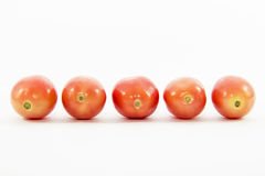 Tomatoes sized in straight line Royalty Free Stock Photo