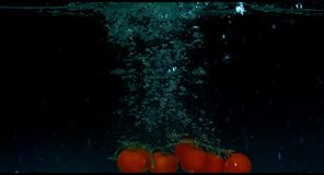 Tomatoes in slow motion floating in water stock video footage