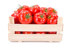 Tomatoes (Solanum lycopersicum) in wooden crate. Fresh ripe tomatoes (Solanum lycopersicum) in wooden crate stock photography