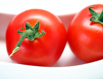 Tomatoes. Some red tomatoes in a bowl Royalty Free Stock Images