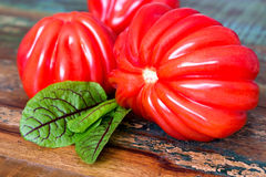 Tomatoes and sorrel Royalty Free Stock Photography