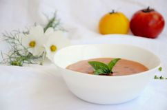 Tomatoes Soup Stock Image