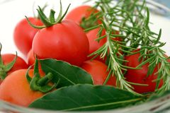 Tomatoes With Spices royalty free stock photography