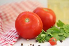 Tomatoes and spices Royalty Free Stock Photos