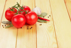 Tomatoes and spices Stock Images