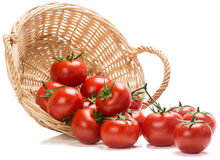 Tomatoes spilling out of basket Stock Photography