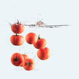 Tomatoes splash Stock Photography