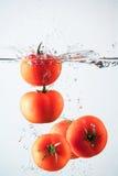 Tomatoes splashing water Stock Images