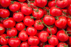 Tomatoes. Stack of tomatoes for sale at a market royalty free stock photo