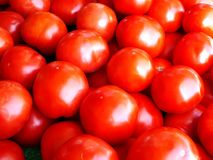 Tomatoes stacked for sale Stock Images
