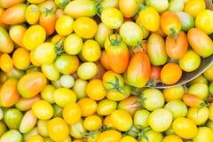 Tomatoes stacks Royalty Free Stock Photos