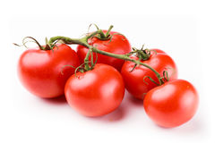 Tomatoes on stem Royalty Free Stock Photos