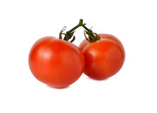 Tomatoes with stem on white Stock Image