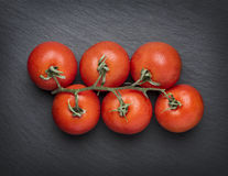 Tomatoes  on stone plate. Stock Images