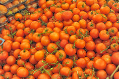 Tomatoes at the store Royalty Free Stock Photo