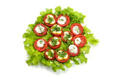 Tomatoes stuffed with cheese and sour cream Stock Images
