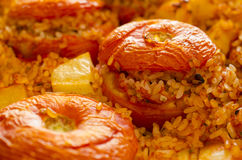 Tomatoes stuffed with rice Stock Image
