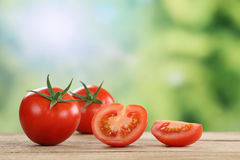 Tomatoes in summer with copyspace Royalty Free Stock Photography