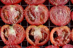 Tomatoes sun dried Royalty Free Stock Photography