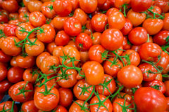 Tomatoes on the supermarket display Royalty Free Stock Image