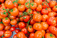 The tomatoes on the supermarket display Royalty Free Stock Images