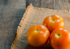 Tomatoes on table. Rich color Tomatoes on a rough texture table stock photos