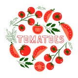 Tomatoes. Template for design with red tomatoes. Illustrated cartoon background. Great for design of healthy lifestyle or diet.Vector illustration Royalty Free Stock Photography