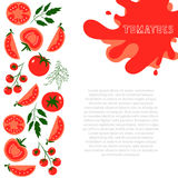 Tomatoes. Template for design with red tomatoes and place for your text. Illustrated cartoon background. Great for design of healthy lifestyle or diet.Vector Royalty Free Stock Image