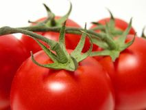 Tomatoes temptation Royalty Free Stock Images