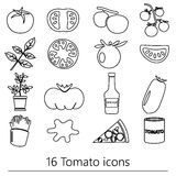Tomatoes theme black simple outline icons set eps10 Royalty Free Stock Image