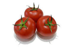 Tomatoes. Three beautiful tomatoes on white background Stock Photo