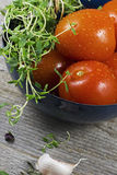Tomatoes and Thyme Royalty Free Stock Photo