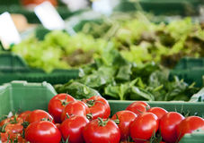 Tomatoes to stall. Fresh tomatoes at the market stall Stock Image