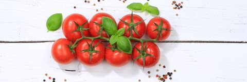 Tomatoes tomato red vegetable banner top view Royalty Free Stock Image