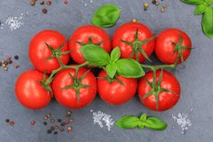 Tomatoes tomato red vegetable slate top view Stock Images