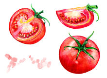 Tomatoes and tomato slices. Watercolor vegetables. Healthy food. Tomatoes and slices of tomato. Watercolor fruit. Healthy food. Healthy food. A healthy way of Stock Photo