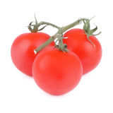 Tomatoes with Twigs Stock Image