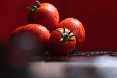 Tomatoes under water drops, red background Stock Image