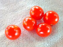 Tomatoes. Vagetables are several vitamins antioxidant Royalty Free Stock Photos