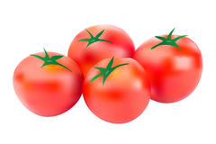 Tomatoes vector Royalty Free Stock Image