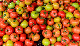 Tomatoes in vegetable market for sale Royalty Free Stock Photos