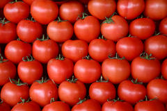 Tomatoes in vegetable market Stock Image