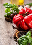 Tomatoes, vegetables and spices Royalty Free Stock Photos