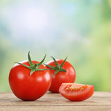 Tomatoes vegetables in summer Royalty Free Stock Image