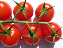 Tomatoes on the vine Stock Photos