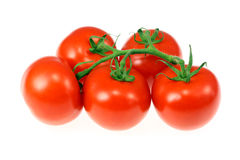 Tomatoes on the vine. Stock Images