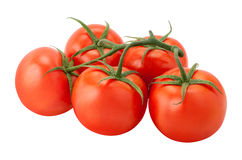 Tomatoes on the Vine isolated Stock Image