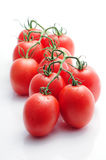 Tomatoes on the vine. Fresh small tomatoes on the vine royalty free stock images