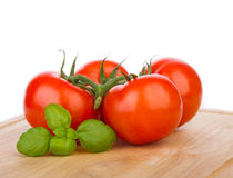 Tomatoes on a vine with fresh basil Stock Photos
